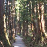 あこがれの聖地☆戸隠神社に行ってきました